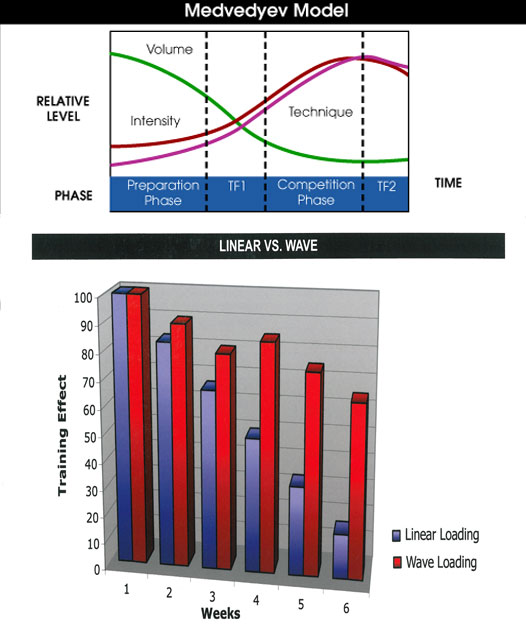 The linear model of periodization developed by Leonid Medvedyev (above) has been used by numerous American strength coaches. The illustration below shows how this model compares to the wave loading model promoted by Charles Poliquin.
